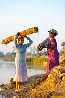 Rural Female Villagers Carrying Bundles Reeds