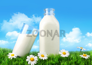 Bottle and glass of milk with grass and daisies