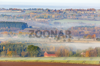 Rural landscape view with fog in autumn