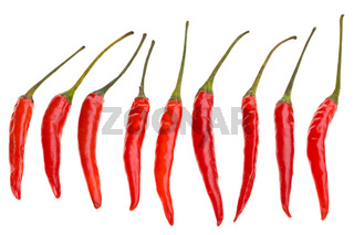 row of red hot chili beans on white background