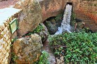 an der Quelle Ain Asserdoun Beni-Mellal Stadtpark Marokko.jpg