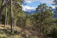 Landscape Garmisch-Partenkirchen