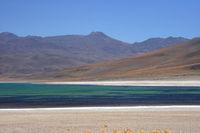 Lagune Miscanti 2