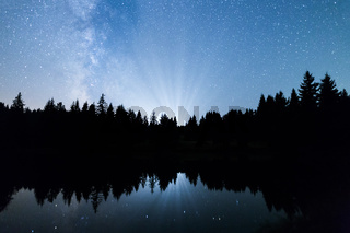 Lake pine trees silhouette Milky Way