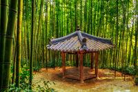 traditional korean pagoda among bamboo