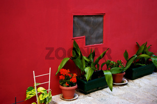 rote Hauswand mit verschiedenen Blumentöpfen