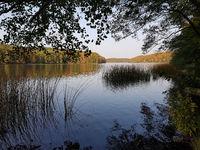 Seenlandschaft im Herbst