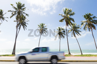 Truck moves at high speed in front of the beach. Coconut trees.