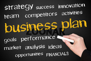 business plan - english