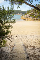Wooden Path Onto Refuge Cove