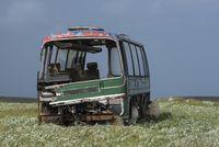Alter Autobus auf einer Wiese mit Schafen, Isle of Lewis
