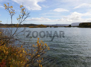 Herbst am See Myvatn in Island