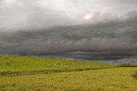 Regenwolken ziehen übers Land