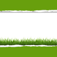 Green Grass And Ripped Paper Border
