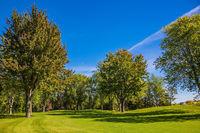 Green grass golf course