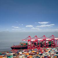 ocean container liner on dock