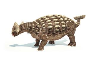Ankylosaurus Dinosaur photorealistic representation. Dynamic posture.