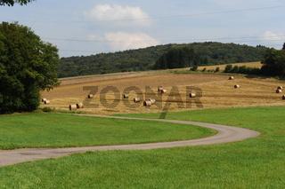 Landschaft Oberthal Selbach Sommer 2009