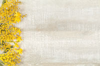 Spring holiday composition in yellow colors