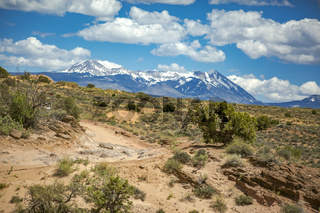 The La Sal Mountains in the background from the trail