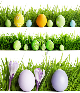 Set of easter eggs in grass