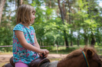 Cute little girl riding on a pony