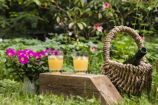 Stilleben mit Saft im Garten, still life with juice in a garden