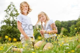 Geschwister Kinder pflücken Blumen zusammen