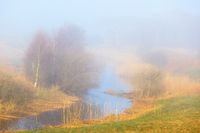 Misty spring morning at the river