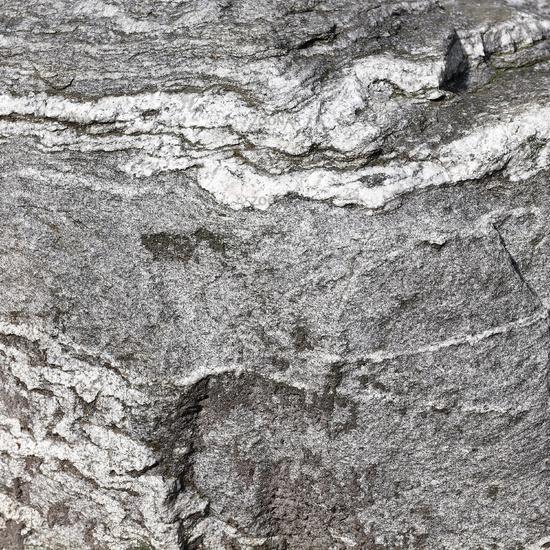 Oberfläche eines Findlings aus Gneis, Nahaufnahme