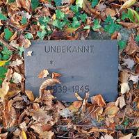 Grab eines unbekannten Kriegsopfers in der Schönholzer Heide in Berlin-Pankow