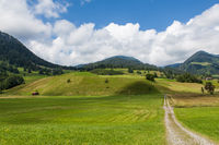 Wiese in Bayern