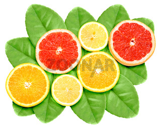 Set of cross citrus fruits on green leaf