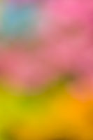 Defocused abstract colorful background