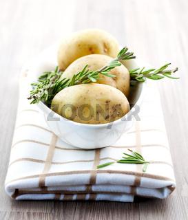 frische Kartoffeln und Rosmarin / fresh potato and fresh rosemary