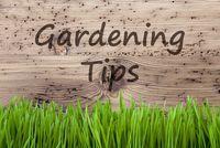 Bright Wooden Background, Gras, Text Gardening Tips