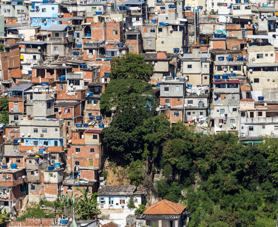 Rio de Janeiro: Poor community and remaining vegetation of the area