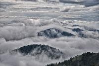 Schwarzwald in Wolken