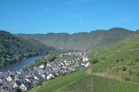 Weinort Ediger-Eller an der Mosel,Rheinland-Pfalz,Deutschland