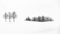 Winterlandschaft im Voralpenland, Bayern