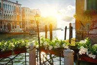 Flowers near Grand Canal, Venice