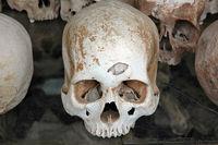 Schädel mit Loch, Killing Fields Phnom Penh