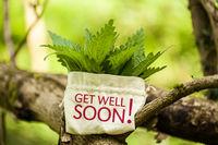 """Brennnesseln mit Wort """"Get well soon!"""""""