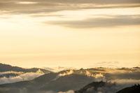 Andes, Bolivar Province, Ecuador, near the inactive stratovolcano Chimborazo in Reserva de Produccion Faunistica Chimborazo, in the Cordillera