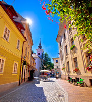 Cobbled old street and church of Ljubljana vertical view