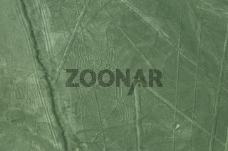 Nazca-Linien Spinne Peru