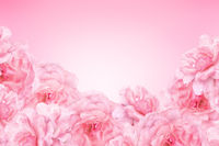 Abstract design of pink summer flowers background with copy space