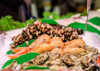 Fresh langoustines, razor clams and oysters