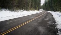 Two Lane Asphalt Road Leads Through Forest Wintertime