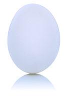 Weisses Ei Freisteller freigestellt isoliert